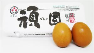 高級卵の人気と違い
